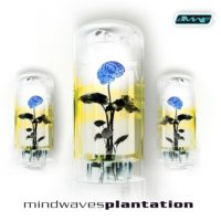 Various ‎Artists - Plantation